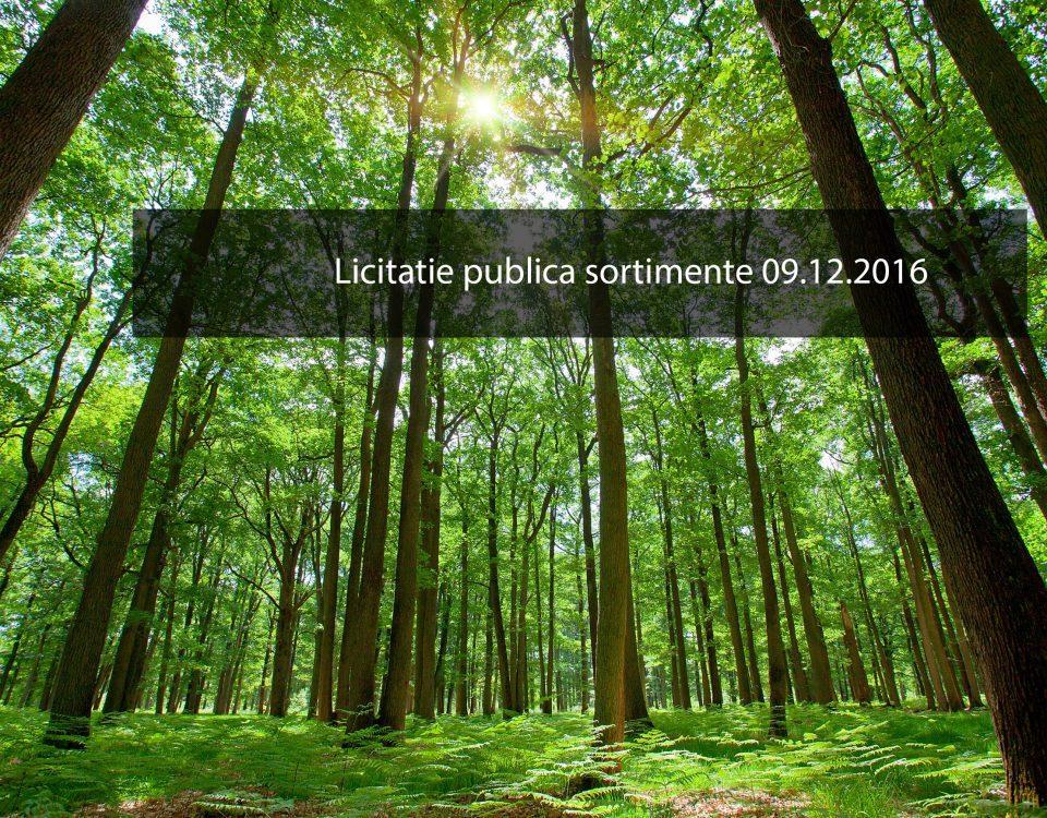 licitatie-publica-sortimente-09122016
